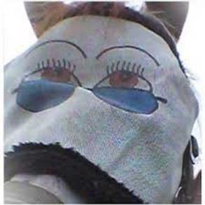Fluemasker
